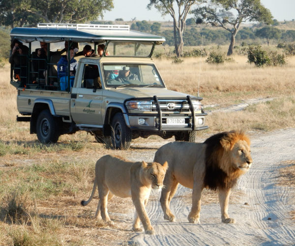 5 Day Botswana Private Scheduled Experience