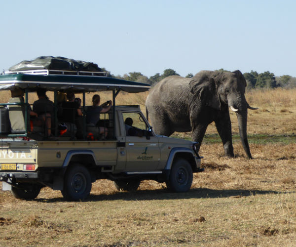 Private Botswana Tours